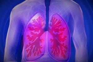pneumologista que atende Unimed em bh